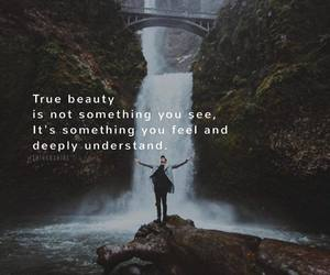 feelings, life, and quote image