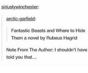 harry potter, hagrid, and text post image
