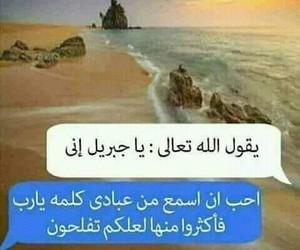 dz, algerian, and algerie image