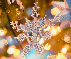 festive, lights, and winter image