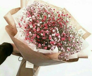 aesthetic, flowers, and rose image
