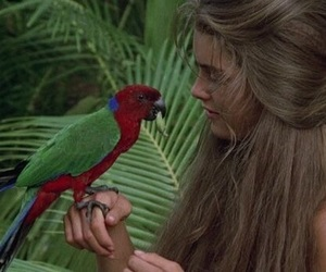 bird, brooke shields, and hair image