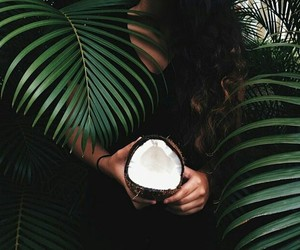 aesthetic, coconut, and tumblr image