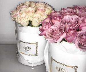 beautiful, gift, and pink image