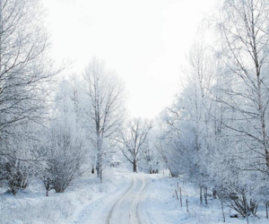 road, snow, and sweden image