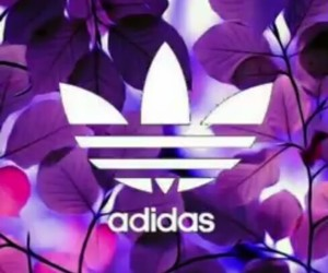 adidas, flowers, and violet image