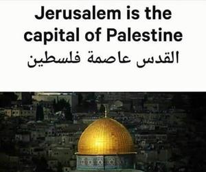 Jerusalem, palestine, and trump image