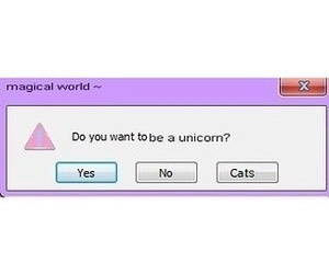 unicorn, cat, and yes image