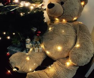 bear, beautiful, and christmas image