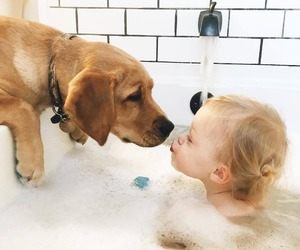 baby, dog, and child image