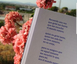 poema, frases en español, and benji verdes image