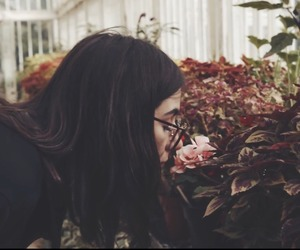 flowers, tumblr, and youtube image