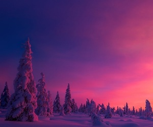 wallpaper, pink, and snow image