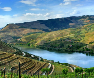 beautiful, valley, and douro image