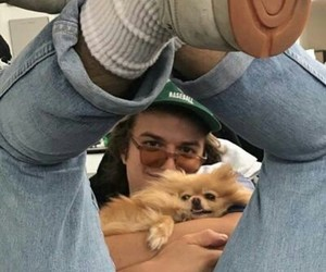 joe keery, stranger things, and dog image