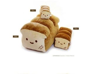 bread and cushion image