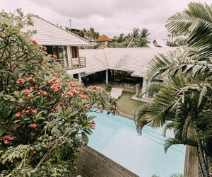 bali, blog, and indonesia image