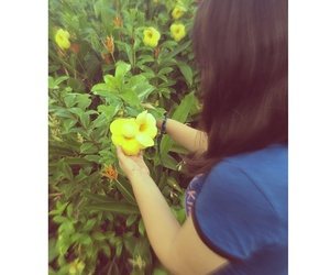 flower, yellow, and garden image