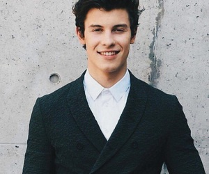 shawn mendes, singer, and funny face image