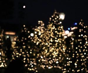 beautiful, christmas, and december image
