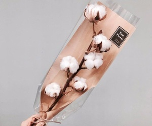 bouquet, cotton, and flowers image