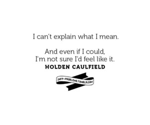 holden caulfield and the catcher in the rye image