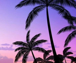 wallpaper, purple, and pink image