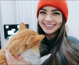 cat, twin, and youtube image