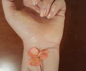 awesome, body, and flower image