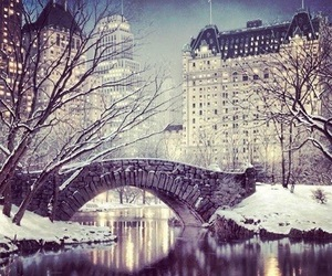 winter, snow, and new york image