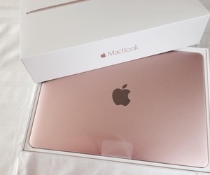 apple, rose gold, and computer image