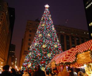 christmas, tree, and daley plaza image