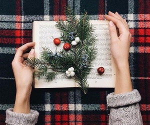 books, christmas, and holiday image