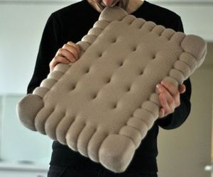 biscuit, diy, and pillow image