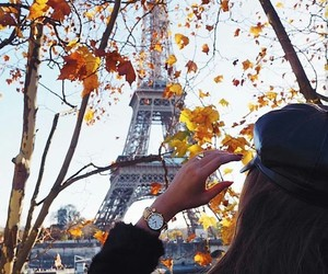 leaves, paris, and watches image