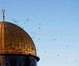 فلسطين, ّالقدس, and العرب image