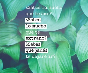 amor, frases, and verde image