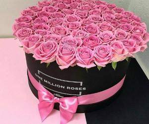 amazing, beautiful, and pink image