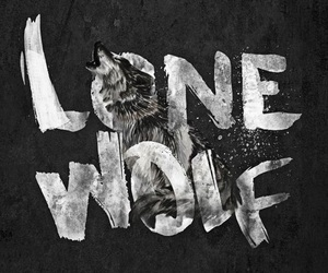 alpha, beta, and wolves image