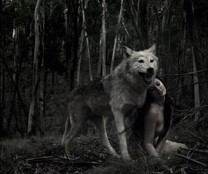 wolf, woman, and forest image