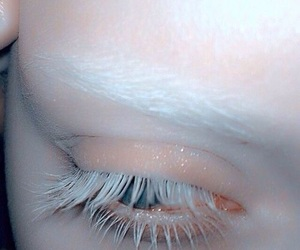 albino, blanco, and eyes image