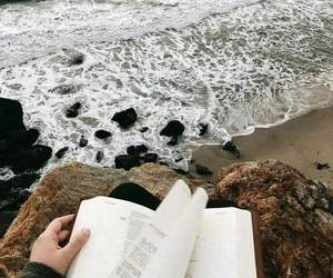 beach, books, and cold image