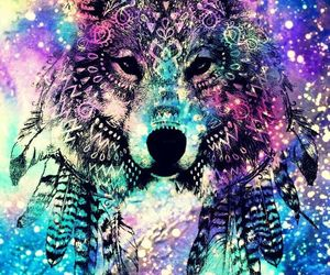wallpaper, colors, and wolf image