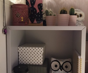 cactus, lumiere, and room image
