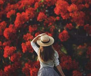 flowers, red, and summer image
