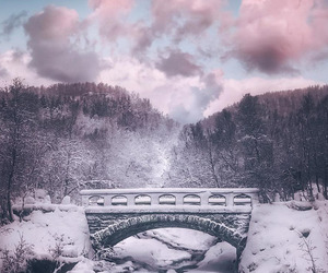 sky and winter image