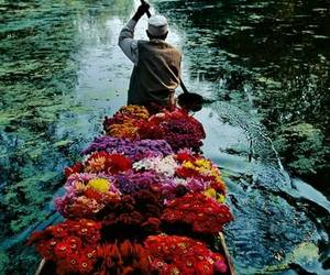 flowers, river, and boat image