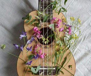 flowers, music, and violin image