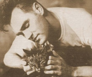 cat, morrissey, and the smiths image