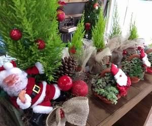 christmas, baby jesus, and Nativity image